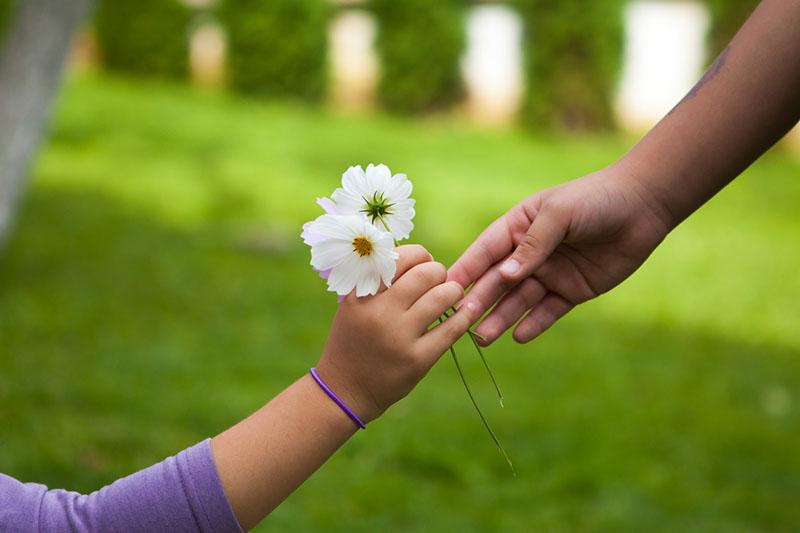 sharing flowers