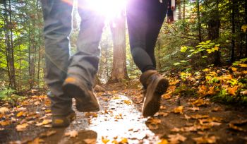 Image of two sets of feet wearing hiking boots and walking in the woods with the sun shining through the trees.
