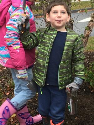 Everett gardening