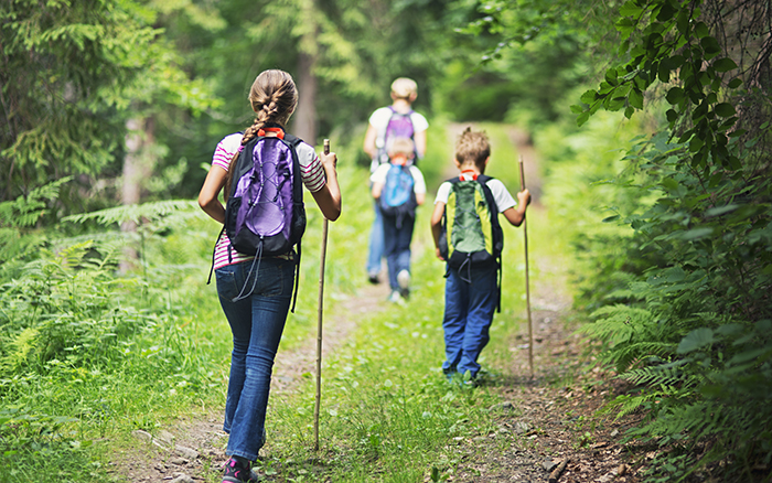 Religious Identity is a Journey. Mother and three kids hiking through a dense forest. Kids are aged 6 and 10.