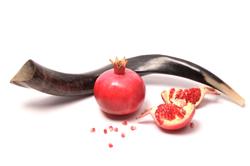 Shofar and pomegranate